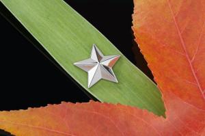 Werbefotografiereihe einer Schmuckkollektion - zu sehen ist ein silberner Stern, der zwischen 2 Blättern drapiert ist.