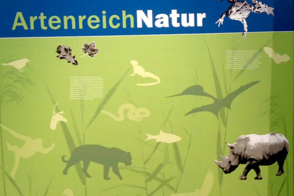 werbeagentur-focus-folierung-nuernberg-tiergarten-bionicum-2015-09