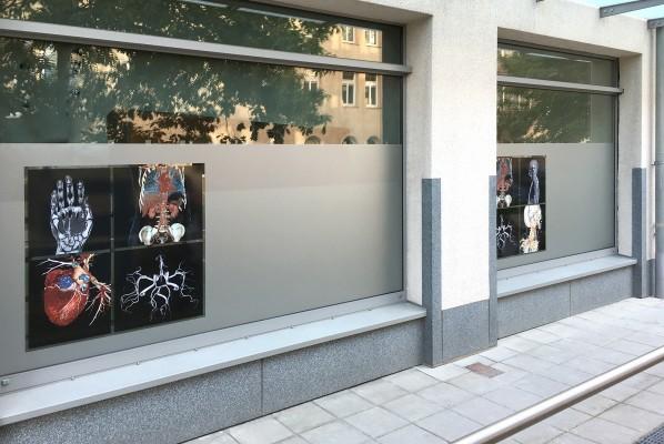 werbeagentur-focus-nuernberg-sichtschutz-medneo